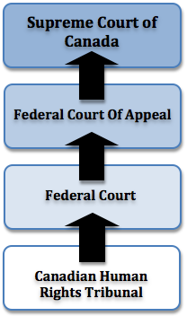 Diagram of Judicial Organization of Canadian Federal Court