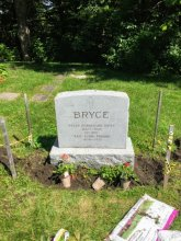 Creating a permanent garden at P.H. Bryce headstone in 2017
